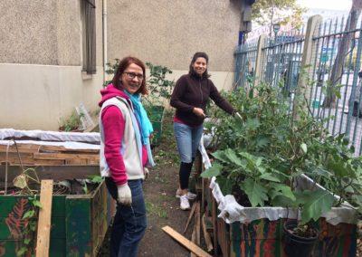Jardinage au jardin partagé Rosa – Rosette